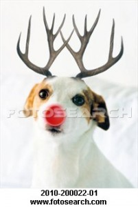 dog-antlers-red_~2010-200022-01